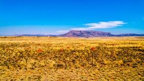Ατελείωτο ευρύ ανοικτό τοπίο της ημι περιοχής Karoo ερήμων στο ελεύθερο κράτος και το ανατολικό ακρωτήριο Στοκ Εικόνα
