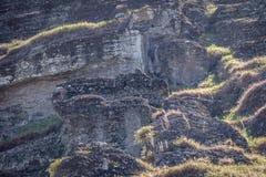 Ατελές άγαλμα Moai που χαράζεται στο λατομείο ηφαιστείων Rano Raraku στο νησί Πάσχας, Χιλή στοκ φωτογραφία με δικαίωμα ελεύθερης χρήσης