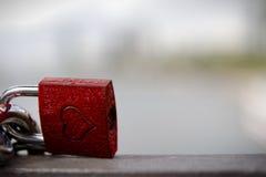 Ατελείωτη κλειδαριά αγάπης Στοκ φωτογραφίες με δικαίωμα ελεύθερης χρήσης