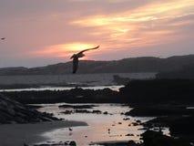 Ατλαντικός Ωκεανός πέρα από το ηλιοβασίλεμα Στοκ φωτογραφίες με δικαίωμα ελεύθερης χρήσης
