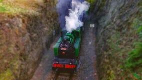 Ατμομηχανή ατμού στην κοιλάδα Prokop στοκ φωτογραφίες με δικαίωμα ελεύθερης χρήσης