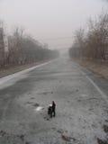 Ατμοσφαιρική ρύπανση στο Πεκίνο Στοκ φωτογραφίες με δικαίωμα ελεύθερης χρήσης
