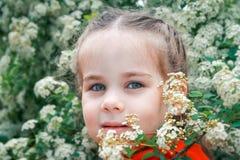 λατρευτό κορίτσι λίγα Στοκ Εικόνα