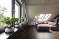 Αττικό δωμάτιο σαλονιών με τον καναπέ Στοκ εικόνες με δικαίωμα ελεύθερης χρήσης