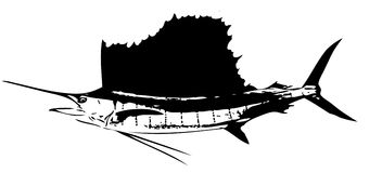 Ατλαντικά sailfish ψάρια Ι διάνυσμα Στοκ φωτογραφία με δικαίωμα ελεύθερης χρήσης
