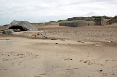 Ατλαντικός τοίχος Στοκ Εικόνες