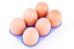 αυγά έξι εμπορευματοκιβ Στοκ Φωτογραφίες
