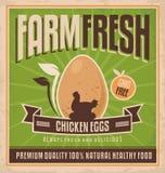 Αυγά αγροτικού φρέσκα κοτόπουλου διανυσματική απεικόνιση