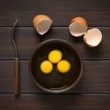 αυγά ακατέργαστα Στοκ εικόνα με δικαίωμα ελεύθερης χρήσης
