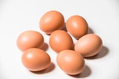 Αυγά από τον αγρότη Στοκ Εικόνες