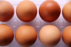 Αυγά για το μαγείρεμα Στοκ φωτογραφίες με δικαίωμα ελεύθερης χρήσης