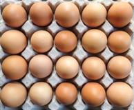 Αυγά δίσκων Στοκ Φωτογραφία
