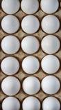 αυγά εμπορευματοκιβωτ Στοκ φωτογραφία με δικαίωμα ελεύθερης χρήσης