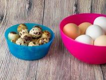 Αυγά και κοτόπουλο ορτυκιών για τη γιορτή Πάσχας για το χρωματισμό στοκ φωτογραφίες με δικαίωμα ελεύθερης χρήσης