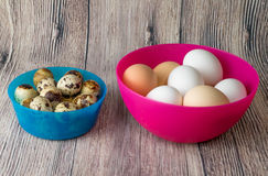 Αυγά και κοτόπουλο ορτυκιών για τη γιορτή Πάσχας για το χρωματισμό στοκ φωτογραφίες