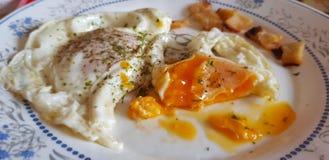 Αυγά και μπέϊκον στοκ εικόνα