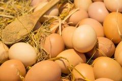 Αυγά και ξύλινο κουτάλι στο ξηρό άχυρο Στοκ Φωτογραφία