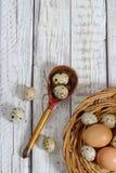 Αυγά και ορτύκια κοτόπουλου Στοκ εικόνα με δικαίωμα ελεύθερης χρήσης
