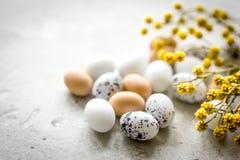 Αυγά και λουλούδι για Πάσχα στο άσπρο πρότυπο veiw υποβάθρου τοπ Στοκ φωτογραφία με δικαίωμα ελεύθερης χρήσης