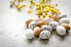 Αυγά και λουλούδι για Πάσχα στο άσπρο πρότυπο veiw υποβάθρου τοπ Στοκ εικόνα με δικαίωμα ελεύθερης χρήσης