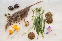 Αυγά και πραλίνες σοκολάτας με τα λουλούδια και τη χλόη άνοιξη Στοκ Εικόνες