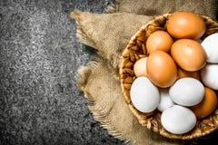 αυγά καλαθιών φρέσκα Στοκ φωτογραφία με δικαίωμα ελεύθερης χρήσης