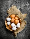 αυγά καλαθιών φρέσκα Στοκ Φωτογραφία