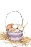 αυγά καλαθιών Στοκ Εικόνες
