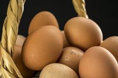 αυγά καλαθιών που γεμίζ&omicro Στοκ Εικόνες
