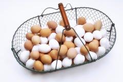 αυγά καλαθιών φρέσκα Στοκ εικόνα με δικαίωμα ελεύθερης χρήσης