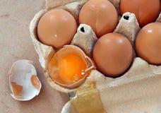 αυγά κιβωτίων Στοκ εικόνα με δικαίωμα ελεύθερης χρήσης