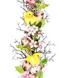 Αυγά, κοτόπουλα, άνθος άνοιξη, κλάδοι, πράσινα φύλλα Floral σύνορα επανάληψης για Πάσχα watercolor Στοκ εικόνες με δικαίωμα ελεύθερης χρήσης