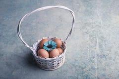 Αυγά κοτόπουλου στο άσπρο καλάθι 2 όλα τα αυγά Πάσχας έννοιας νεοσσών κάδων ανθίζουν τη χλόη χρωμάτισαν τις τοποθετημένες νεολαίε Στοκ εικόνες με δικαίωμα ελεύθερης χρήσης