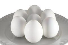 αυγά κοτόπουλου Στοκ φωτογραφίες με δικαίωμα ελεύθερης χρήσης