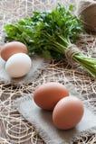 Αυγά κοτόπουλου, δέσμη του μαϊντανού και σπάγγος Στοκ φωτογραφία με δικαίωμα ελεύθερης χρήσης
