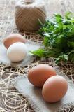 Αυγά κοτόπουλου, δέσμη του μαϊντανού και σπάγγος Στοκ Φωτογραφία