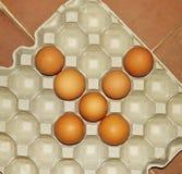 Αυγά κοτόπουλου που τακτοποιούνται Στοκ Εικόνες