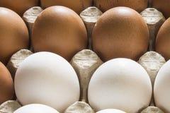 Αυγά κοτόπουλου σε μια στάση Στοκ φωτογραφίες με δικαίωμα ελεύθερης χρήσης