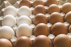 Αυγά κοτόπουλου σε μια στάση Στοκ εικόνα με δικαίωμα ελεύθερης χρήσης