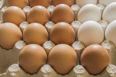 Αυγά κοτόπουλου σε μια στάση Στοκ Φωτογραφίες