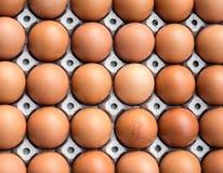 Αυγά κοτόπουλου στην επιτροπή εγγράφου Στοκ εικόνες με δικαίωμα ελεύθερης χρήσης