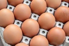 Αυγά κοτόπουλου στην επιτροπή εγγράφου στοκ φωτογραφίες με δικαίωμα ελεύθερης χρήσης