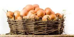 Αυγά κοτόπουλου στο καλάθι που απομονώνεται. Οργανική τροφή Στοκ φωτογραφία με δικαίωμα ελεύθερης χρήσης
