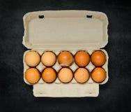 Αυγά κοτόπουλου στο κιβώτιο χαρτοκιβωτίων αυγών Στοκ Εικόνα