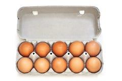 Αυγά κοτόπουλου στο χαρτοκιβώτιο αυγών πολτού στοκ εικόνα με δικαίωμα ελεύθερης χρήσης