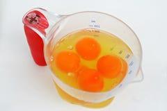 αυγά κύπελλων φρέσκα στοκ εικόνα με δικαίωμα ελεύθερης χρήσης