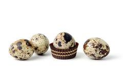 αυγά λίγη νησοπέρδικα Στοκ Εικόνα
