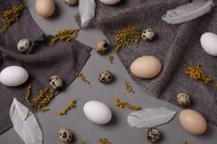 Αυγά με τα λουλούδια και διακοσμητικά στοιχεία στο σκυρόδεμα Στοκ Εικόνες