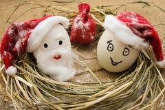 Αυγά με τα πρόσωπα στη φωλιά για τα Χριστούγεννα Στοκ Εικόνες