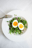 Αυγά με τους νεαρούς βλαστούς στο πιάτο Στοκ Εικόνα